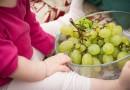 Ovocie by malo byť obľúbenou detskou maškrtou. Obzvlášť v lete.