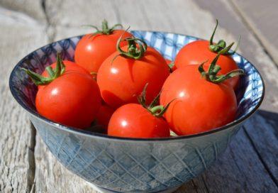 Niet nad paradajky zo záhradky