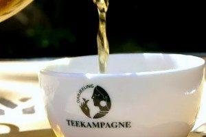 Zdravie v podobe zeleného čaju
