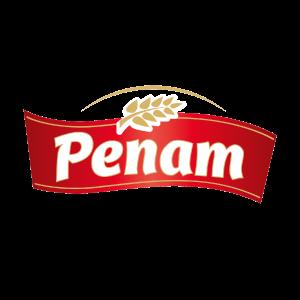 logo-penam-basic1600