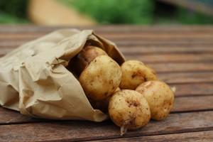 Všetko čo potrebujete vedieť o zemiakoch