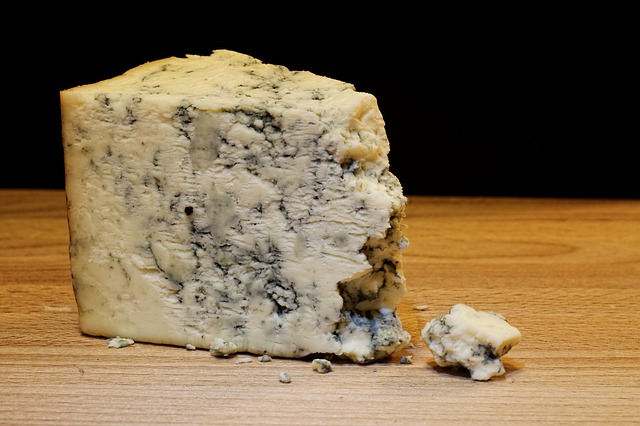 mold-cheese-933309_640