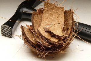 Ako správne otvoriť kokosový orech