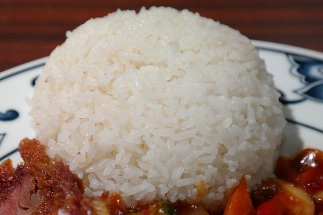rice-235775_640