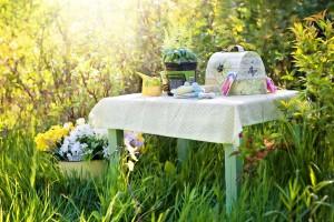 Letný piknik v prírode