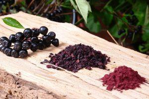 Arónia: Kráľovná antioxidantov