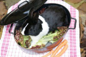 Jedného králika, prosím