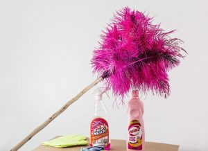 feather-duster-cleaning-housework-cleaner