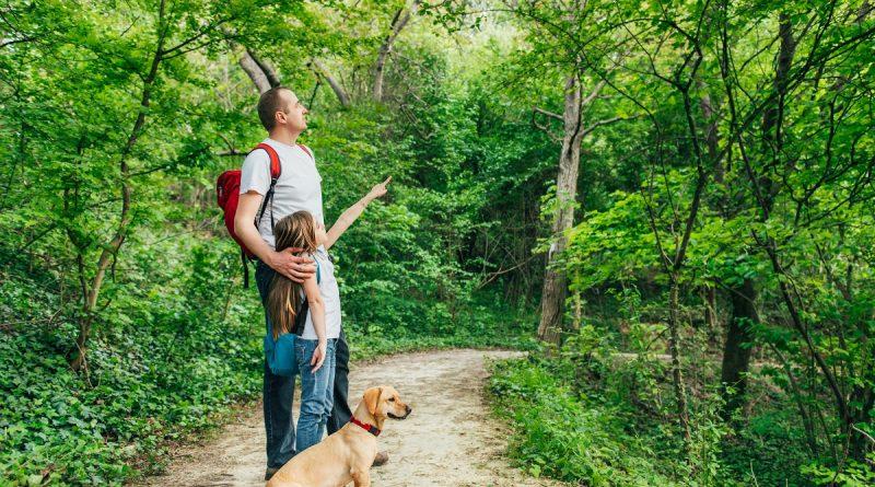 Prechádzka oca,syna a ich psa v prírode