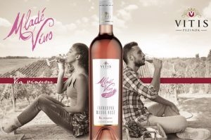 Vitis víta sezónu mladých vín snovými odrodami