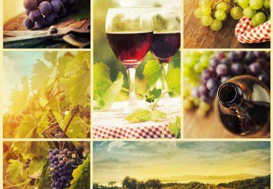 Ochutnali ste už nealkoholické víno?